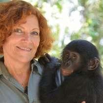 Помощь приматам разных видов, реабилитация детёнышей обезьян, в Москве
