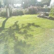 Покос травы професионально, в Бору