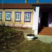 Продается кирпичный дом со всеми удобствами в д. М. Извалы, в Елеце