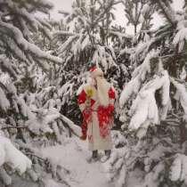Дед Мороз и Снегурочка в детский сад и на дом!, в г.Брест
