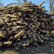 Прицеп дров, в г.Кишинёв