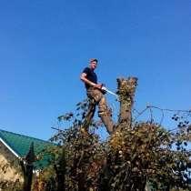 Расчистка под строительство участка в Жуковском, в Жуковском