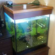 Продам аквариум-куб 160 литров, в г.Николаев