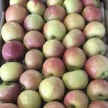 Яблоки Фуджи, в Краснодаре