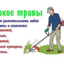 Покос травы и бурьяна, спил кустарников и мелких деревьев, в г.Минск