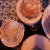 Спилы из разных пород дерева, в Комсомольске-на-Амуре