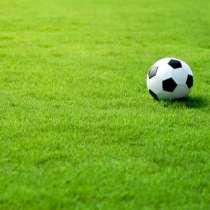 Травосмесь для быстрого восстановления футбольных полей, в Ростове-на-Дону