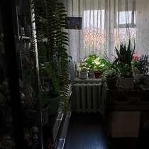 Продам однокомнатную квартиру, в Бердске