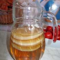 Чайный гриб, в Москве