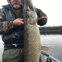 Организую рыбалку в Астрахани, в Астрахани