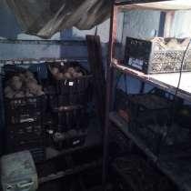 Продажа ячейки в коллективном погребе, в Новокузнецке