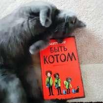 Книга Мэтт Хейг, в г.Минск
