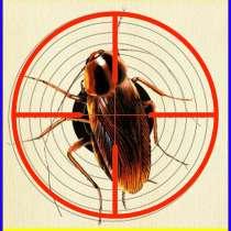 Как избавиться от тараканов услуги - Уничтожение тараканов, в г.Алматы