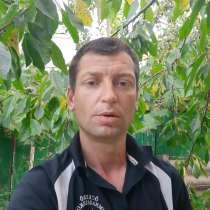 Octavian, 41 год, хочет пообщаться, в г.Бричаны