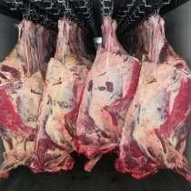 Мясо оптом, в Салехарде