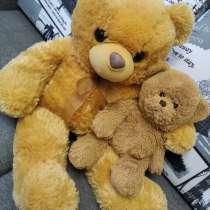Медведи плюшевые, в Брянске