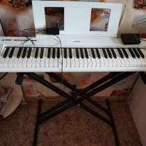 Музыкальный инструмент, в Березниках