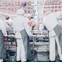Требуются мужчины на индюшинный мясокомбинат!!!, в г.Зелёна-Гура