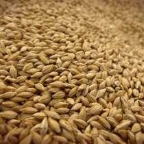 Продаем Пшеницу 3 класс и 4 класс, в г.Алматы
