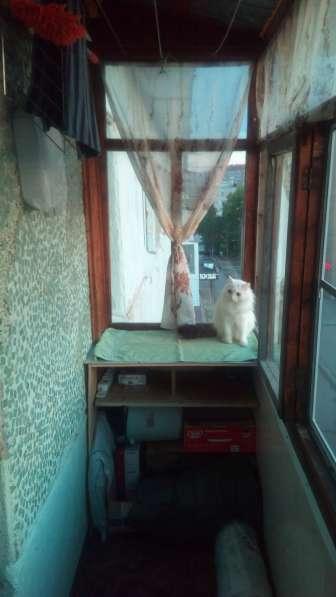 1 комнатная кв в центре Комсомольская пл 7/10 в Ухте фото 3