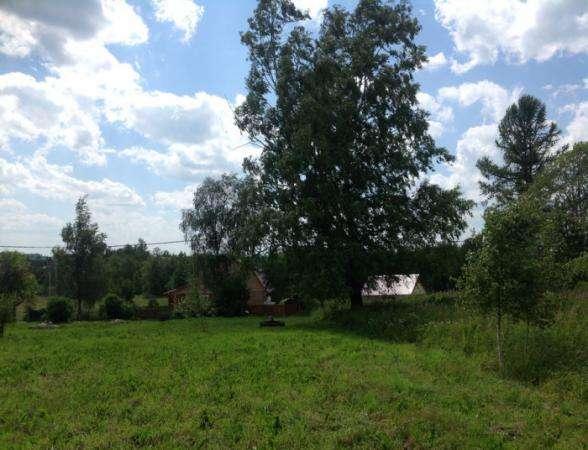 Продается земельный участок 30 соток (под личное подсобное хозяйство) в д. Шваново, Можайский район,129 км от МКАД по Минскому шоссе.