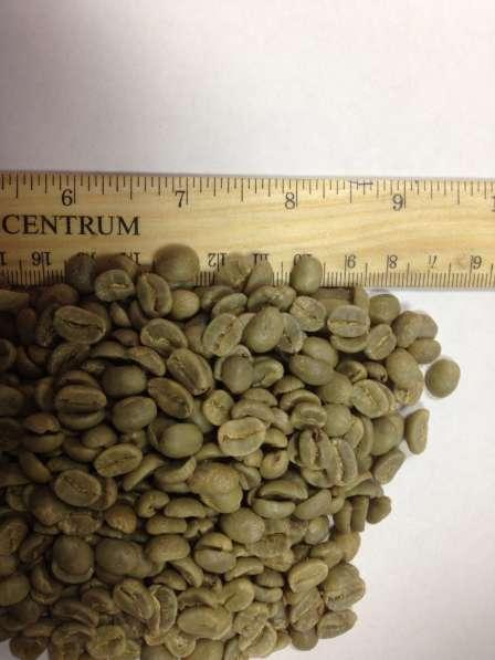 Зелёный кофе 1кг
