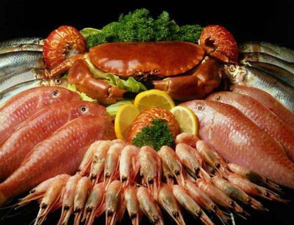 Продажа готовый бизнес морепродукты