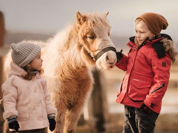 Детский отдых. Уроки зоотерапии. Калининград