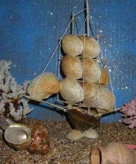 Сувениры в асортименте из морских раковин в Симферополе