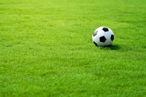 Травосмесь для быстрого восстановления футбольных полей