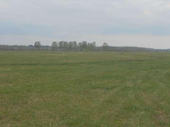 Срочно продам большой участок116 га у Кудряшовского бора
