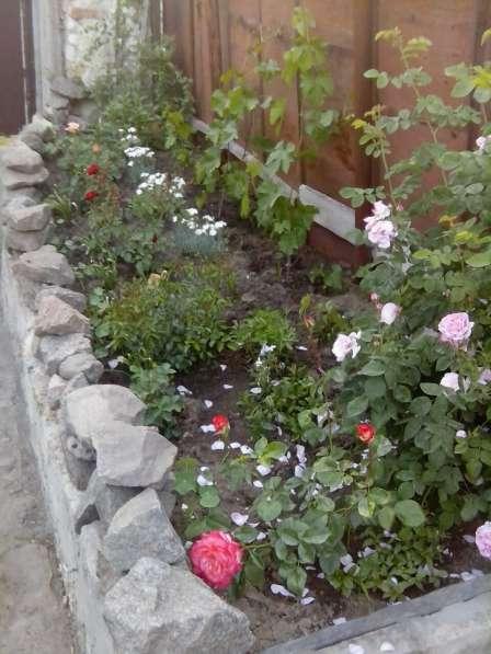 продажа дома кл. орджоникидзе