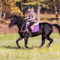 Уроки верховой езды.Обучение детей и взрослых., в Нижнем Новгороде