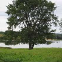Земельный участок у воды в тихом и красивом месте, в Нижнем Новгороде