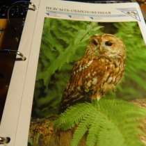 Развивающие сборники и мире животных, в Анапе