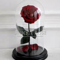 Купить сказочные Розы вколбе, в Саранске