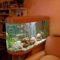 Чистка аквариумов, в Москве