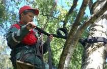 Укрепление Деревьев Каблинг Брейсинг Лечение дупел, в Сочи