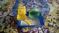 Клетка для грызунов, в г.Пинск