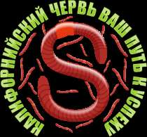 Продажа червей, в Астрахани