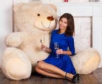 Плюшевые медведи, в Екатеринбурге