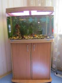 Продам аквариум с тумбой, в Челябинске