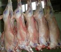Мясо баранины оптом прямо от производителя с отличной ценой…, в Новосибирске