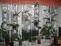 Подставки для цветов, в Санкт-Петербурге