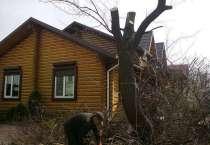 Спилим деревья любой сложности в любых условиях, в Брянске