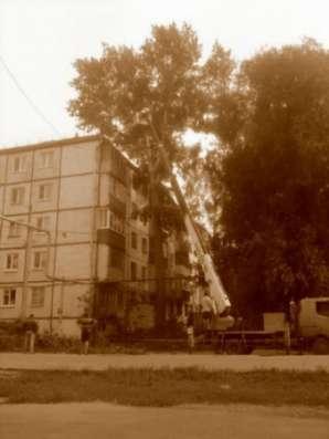 Выкорчевка пней, спил деревьев в Самаре в г. Самара Фото 1