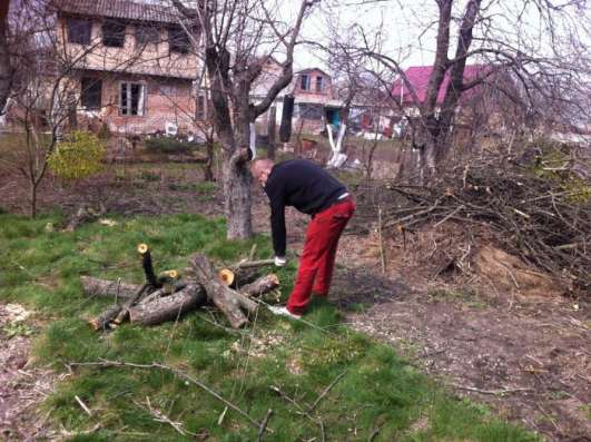 Подготовим Ваш участок к строительству в Домодедове Фото 1