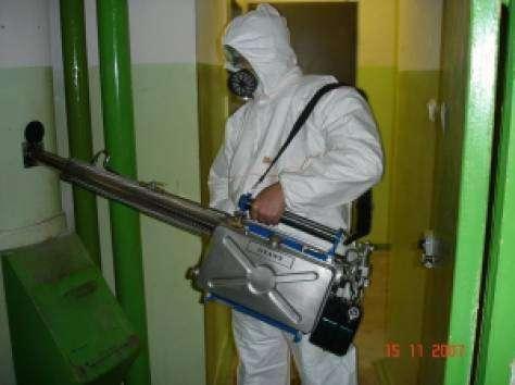 Уничтожение клопов тараканов от 777 р генератром гарантия в г. Королёв Фото 1