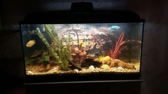 Продам аквариум б/у 200 литров