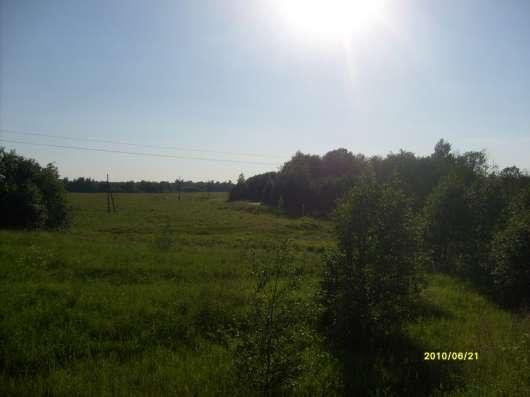 4.1 га земли сельхоз.назначения в 10 км от Углича Яросл. обл
